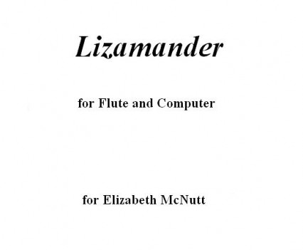 Lizamander Portfolio
