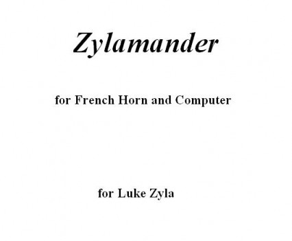 Zylamander Portfolio